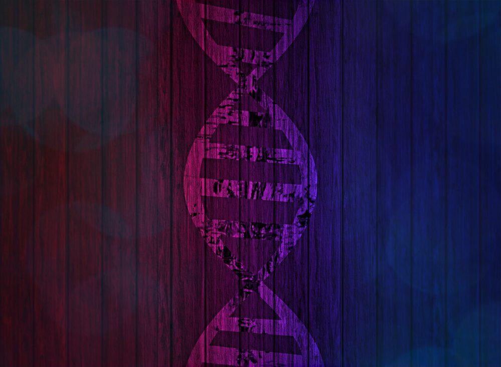 genetics homework